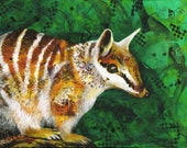 Numbat fine art print - Native Australian animal art - numbat portrait - Gift for overseas relatives - conservation art- by  Michelle Gilks