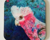 Galah drink coasters - pink and grey galah - art coasters - Australian bird coasters - by Michelle Gilks