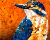 Kingfisher original art print - Australian bird - kingfisher portrait - modern bird art - gift for bird lover - by Michelle Gilks
