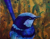 Blue Wren fine art print - spendid fairy wren - Australian bird art - by Michelle Gilks