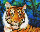 Tiger fine art print -  tiger portrait - King in an Amber Coat  - Michelle Gilks