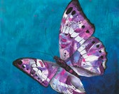 Butterfly fine art print - purple butterfly art -  Chrysanthmum Rain - by Michelle Gilks