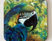 Macaw drink coasters - parrot artwork - tropical themed decor - by Michelle Gilks -