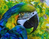 Macaw fine art print - Macaw portrait - Parrot art print - The Real Macaw - by Michelle Gilks