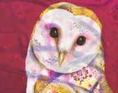 owl fine art print - barn owl portrait - archival wall art- by  Michelle Gilks