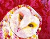 Barn owl fine art print - Owl Selfie - archival wall art - by Michelle Gilks