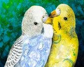 Two budgies fine art print - budgerigar art print - bird wall art - kissing birds art print - bird art reproduction - bird lover gift