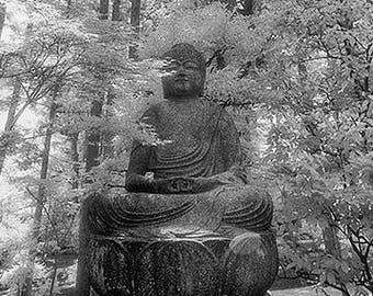 Buddha in the Trees, Nara, Japan