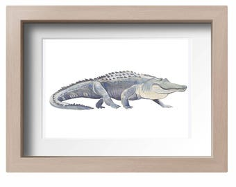 American Alligator Print, watercolor art, animal print, gator wall art