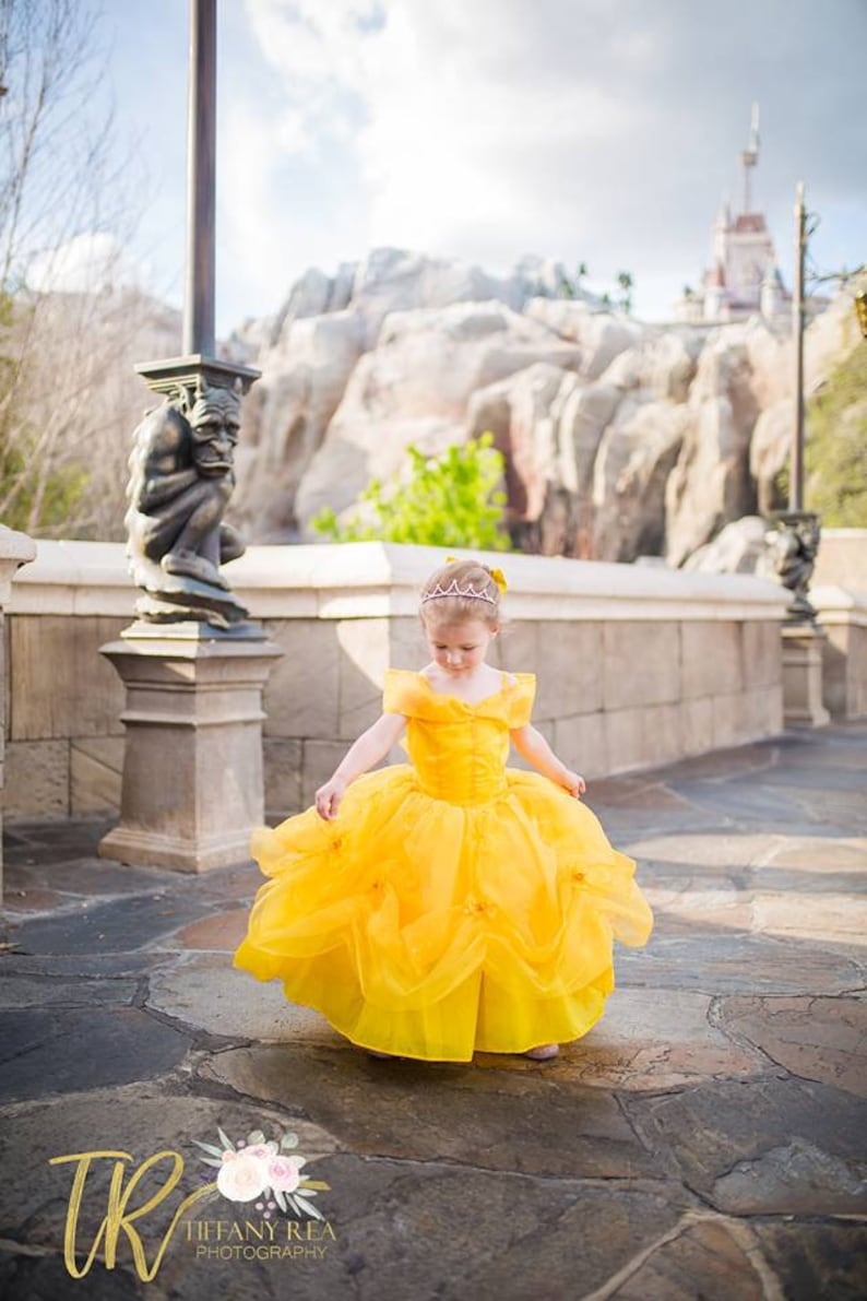 Belle Dress / Disney Princess Dress Beauty and the Beast image 0