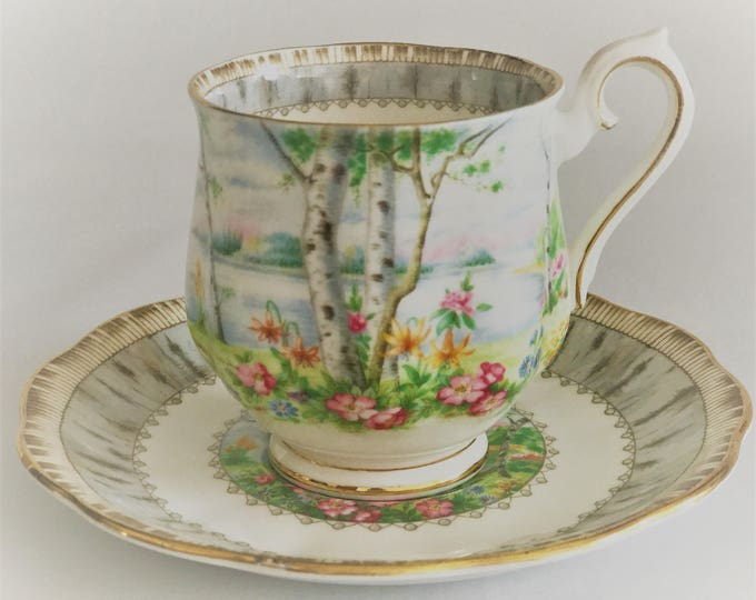 Royal Albert Bone Fine China Silver Birch Pattern-cup coffee and saucer