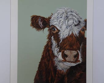 Curly Cow Original Limited Edition Print