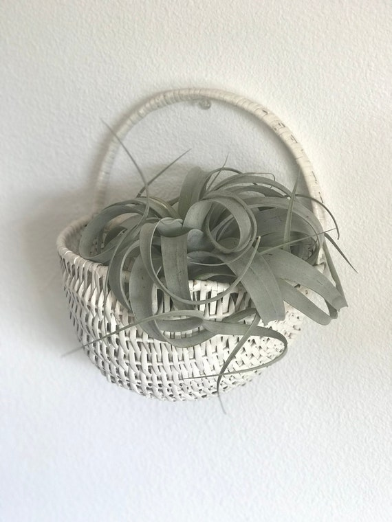 wall mounted decorative metal wire small baskets french.htm white wicker wall pocket basket large woven wicker wall etsy  pocket basket large woven wicker wall