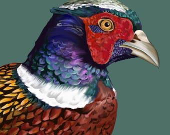 Pheasant - Print - 5.5 x 5.5 inches - Art - Countryside - Wildlife - Fowl