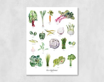 Vegetables Art Print | wall art, wall decor, housewarming gift, kitchen decor, home decor, watercolor painting, french, kitchen wall decor