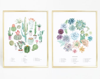 Cactus & Succulent Art Prints | wall art, wall decor, housewarming gift, bedroom decor, home decor, botanical print, watercolor painting