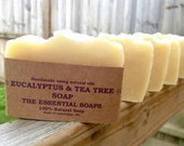 Eucalyptus & Tea Tree Soap,  Natural Soap, Plastic Free, Paraben Free, Cleansing Soap, Oily Skin, Moisturising, Zero Waste, Best Soap