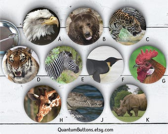 "Animals Button or Magnet, 1.5"" Pin-back Button Set, Wildlife Pin, Tiger Badge, Bear Button, Party Favors, Eagle Flair 096"