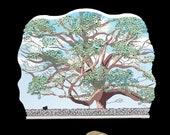 Oak Tree of Basking Ridge Keepsake - LIMITED RUN