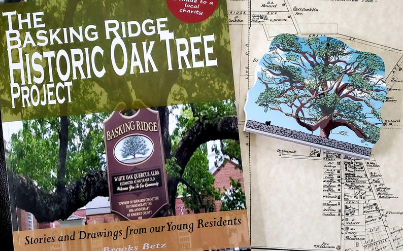 BUNDLE SPECIAL  Historic Oak Tree Book & Keepsake image 0