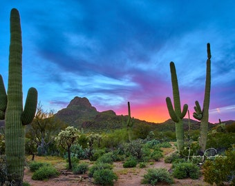 Tucson Postcards, Fine Art Note Cards and Prints