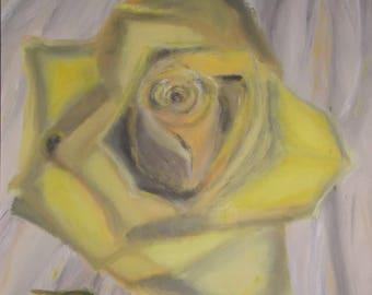 Rose, Shades of Yellow