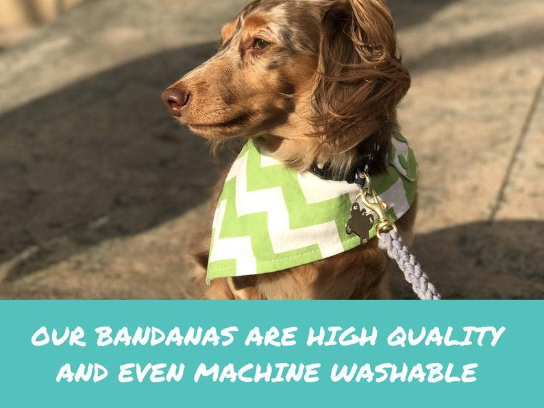 Birthday Dog Bandana PARTY ON WHITE Machine washable pet bandana with snaps Easy snap-on bandana for dogs and cats Customizable.