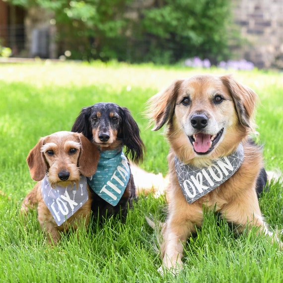 Summer Floral Dog Bandana Pet Scarf Dog Bandana Personalized Pet Bandana Printed Bandana