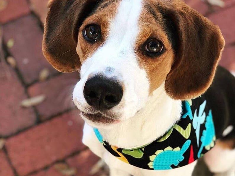 Dog Bandana SUSHI Machine washable pet bandana with snaps Dog gift Fur baby Easy snap-on bandana for dogs and cats Dog mom.