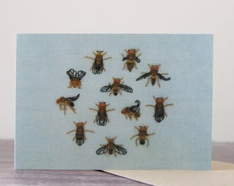 Drosophila Melanogaster Mutants Greeting Card - Single