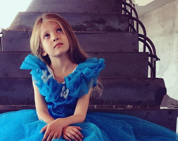 Cinderella girl, Cinderella film dress, Cinderella bal dress, luxury deguisement, sequined tulle, taffetas