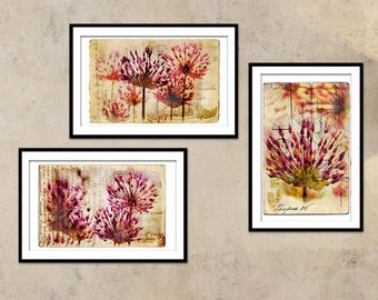 Wall Art Prints, Set of 3 Prints. Flower postcard paint, photography set, nature, travel, collection,