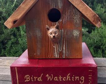 Bird Watching Cat  - Birdhouse
