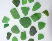 Green Sea Glass Pieces Genuine Sea Glass Ocean wave tumbled Craft Supply 18