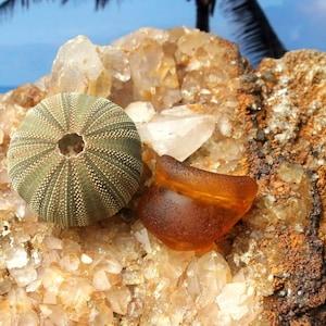 Yellow sea glass Very rare flawless brilliant illuminating yellow Bora Bora genuine Sea Glass Gem South Sea Sea Glass