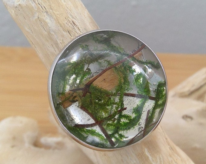 XXL Silber Ring mit echtem Holz und Moos
