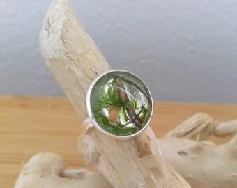 Silber Ring mit echtem Holz und Moos in kristall klarem Resin