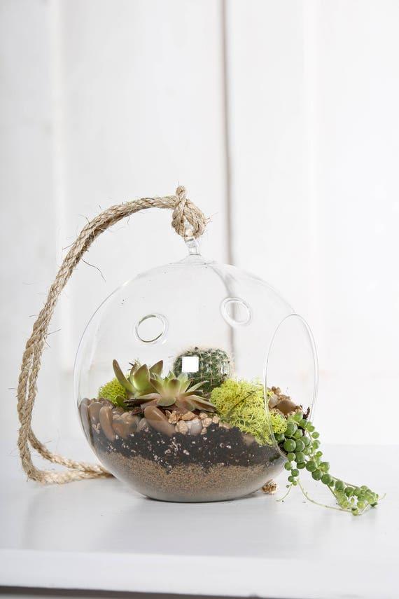 Hanging Terrarium Glass Ball Etsy
