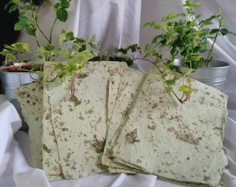 Handmade Light Green with Lavender / Ivy / Rose Leaves Recycled Paper Sheets