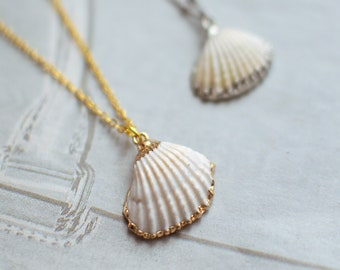 Gold shell necklace - Ready for summer?
