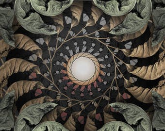 Fine Art Print - Mandala from nature - Momento Ad Vigere 5