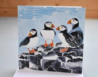 Farne Island Puffins Card - sea bird card, bird greeting card, puffin birthday card, twitcher card, blank inside card, puffin greeting card
