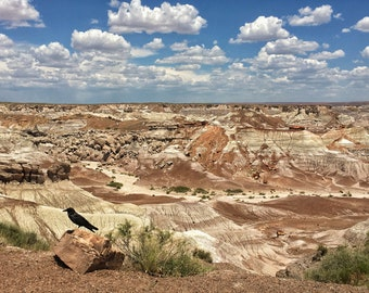 Painted Desert - Digital photography download