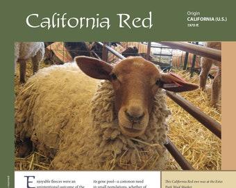 Deborah Robson's Guide to Fiber: California Red (PDF download)