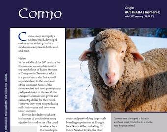 Deborah Robson's Guide to Fiber: Cormo (PDF download)