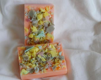 Glycerin Soap Funky Soap Handmade Goat's Milk Vegetable  Soap