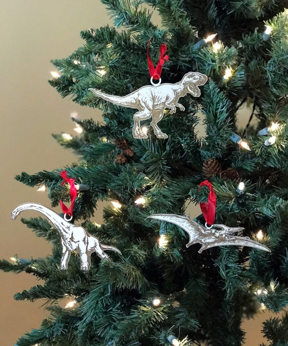 Wierd Christmas Ornament.Dinosaur Ornaments Set Of Three Christmas Ornament Set Cool Ornaments Science Weird Different Mothers Day Gift Mothers Day Gift