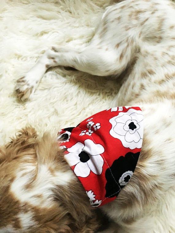 Bandana collier de chien Floral rouge japonais