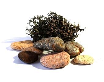 6 Sea Rocks, Feng Shui, Nature, DIY, Stones, Sea Bank, Sea Stone, Greece Sea, 6 Natural Stones, Stack Of Stone, Garden Decoration,Aegean Sea