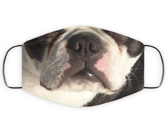 Mom Gift for Boston Terrier Dog Lover, Two Layer Protective Mask, Reusable, Washable, Breathable, Print Quality Present for Dad Father's Day